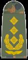 Luftwaffe-331-Generalleutnant.png