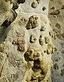Lumpy Sandstone - geograph.org.uk - 694246.jpg