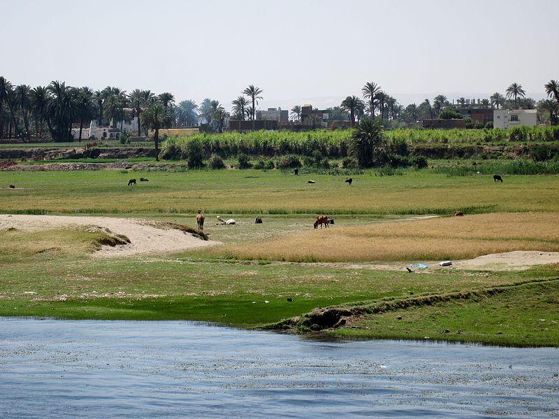 File:Luxor 09.jpg