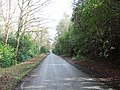 Lyburn Road - geograph.org.uk - 355874.jpg