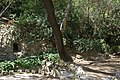 MADRID PARQUE de MADRID COLINA ARTIFICIAL VIEW Ð 6K - panoramio (2).jpg