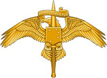 Image of Marine Special Operator Insignia
