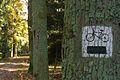 MOs810, WG 2013 21, OChK Baszkow Rochy, trails (4).JPG