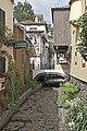 Madeira art (23425495369).jpg