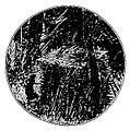 Malot - En famille, 1893 p109.jpg