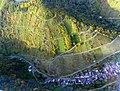 Manubach Obertal - panoramio.jpg