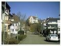 March Spring Emmendingen - Master Habitat Rhine Valley Photography 2013 - panoramio (3).jpg