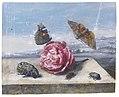 Margaretha de Heer - Butterflies and beetles around a rose on a stone ledge 070L13040 6WBZK.jpg