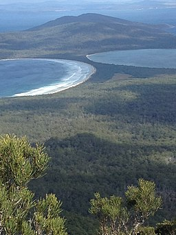Maria Island from the top of Bishop and Clerk.jpg