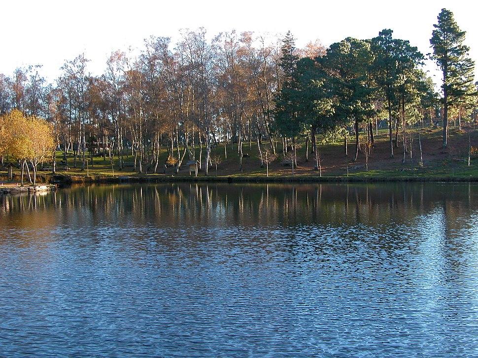 Marin Lago vista
