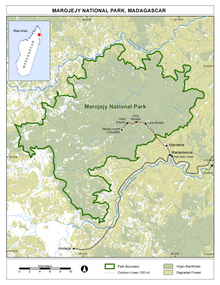 Map of showing contour lines, forest cover in two shades (virgin vs. degraded), the trail from the visitor center, and the road and nearby towns.