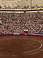 Matador Jeronimo and La Plaza Mexico.jpg