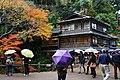 Meiji no Mori Minoh Quasi-National Park Minoh Osaka pref Japan05s3.jpg
