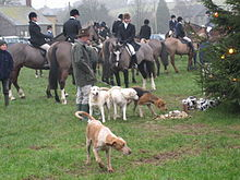Fox hounds and huntsmen on horseback on a village green