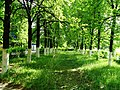 Miass, Chelyabinsk Oblast, Russia - panoramio (52).jpg