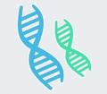 Microorganism identification - Molecular methods.png