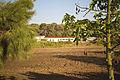Mikveh Israel IMG 0561 (14368603021).jpg