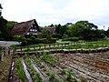 Miyajitake jinja museum - panoramio (7).jpg