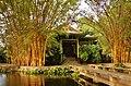 Moanalua Gardens Teahouse - panoramio.jpg