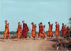 Saffron (color) - Buddhist monks in the Theravada tradition