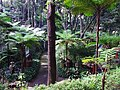 Monte Palace Tropical Garden DSCF0123 (4642268891).jpg