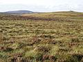 Moorland, Carn Bad a' Ghad - geograph.org.uk - 1462741.jpg