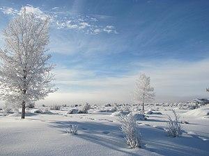 image of Morning Freezing Fog in Elko, Nevada