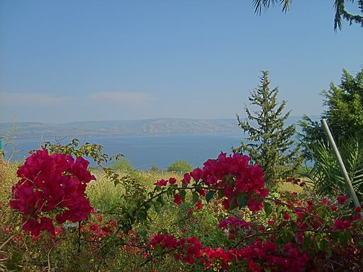 Mount of Beatitudes View Sea of Galilee Golan 200704