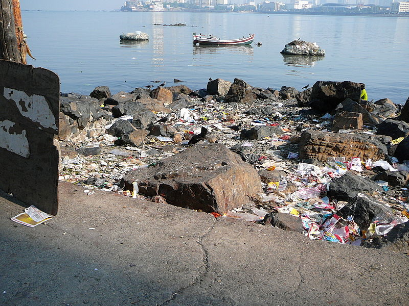 File:Mumbai environmentalproblems.JPG