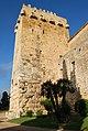 Muralles romanes (Tarragona) - 6.jpg