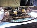MuseoPianadelleOrmeShermannDD 06.jpg
