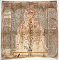 Mystical body of tantric meditation, flow of the life force Wellcome L0030226.jpg