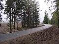 Näpi, uus kergliiklustee - panoramio (1).jpg