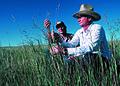 NRCSSD85011 - South Dakota (6205)(NRCS Photo Gallery).jpg