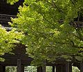 Nanzen-ji 南禪寺 (KYOTO-JAPAN) (4950811051).jpg
