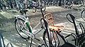 Nationale Postcode Loterij bicycle (Winnaars editie 111626), Station Winschoten (2019) 06.jpg