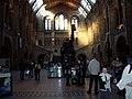 Natural History Museum (5341274959).jpg