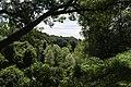 Nature Scenery of Forest Park, Springfield, Massachusetts - panoramio.jpg