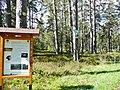 Naturschutzgebiet Hesel-, Brand- und Kohlmisse - panoramio.jpg