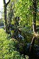 Naturschutzgebiet Mittleres Innerstetal mit Kanstein - Derneburg - die Nette unterhalb des Schlosses (17).JPG