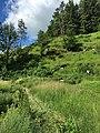Naturschutzgebiet Trockental Karstgebiet Fränkische Schweiz.jpg
