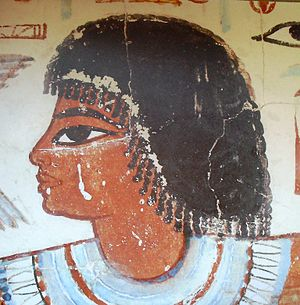 Nebamun - Detail of the head of Nebamun, from the scene Hunting in the Marshes in the tomb of Nebamun, exposed in the British Museum