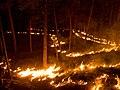 Night Burn Operations (7170066295).jpg