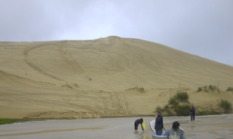Ngāi Takoto - The rohe (area) of Ngāi Takoto includes Ninety Mile Beach in the Far North District.