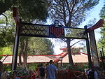 Ninja - Six Flags Magic Mountain.JPG