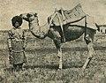Niva magazine, 1916. img 040.jpg