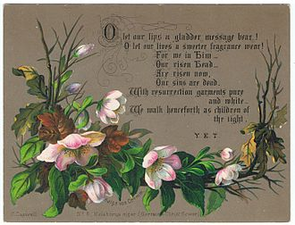 Helleborus niger - Heleborus niger, by Helga von Cramm, chromolithograh, with a prayer by Y.E.T., c. 1880.