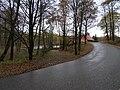 Nový Jáchymov, silnice, Prostřední rybník.jpg