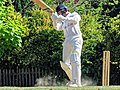 Nuthurst CC v. Henfield CC at Mannings Heath, West Sussex, England 053.jpg