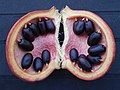 Nuts 02.jpg